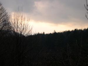 Hillside Serra San Bruno