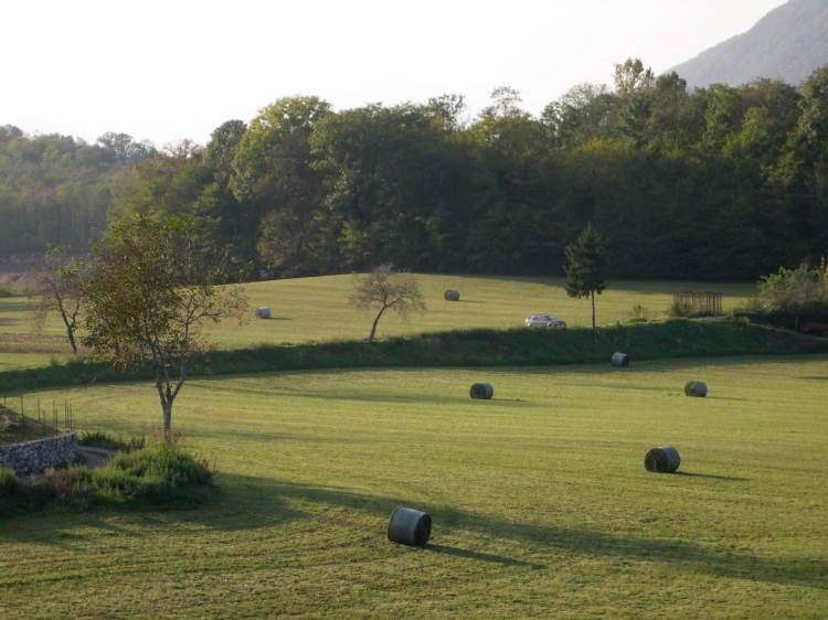 hayfield in Lombardia with Monte Rosa in the Background made invisible by sunlight.